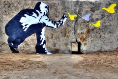 Freedom-graffiti